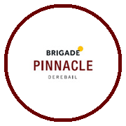 Brigade Pinnacle Project Logo