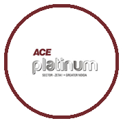 Ace Platinum Project Logo