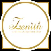 Paradigm Zenith Project Logo