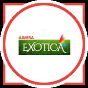 Ajmera Exotica Project Logo