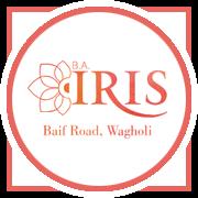 BA IRIS Project Logo
