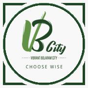 Indis VB City Project Logo
