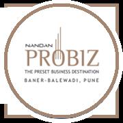 Nandan Probiz Project Logo