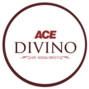 Ace Divino Project Logo