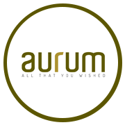 Space Aurum Project Logo