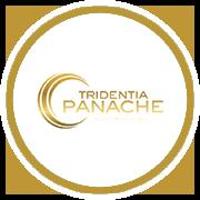 Trindentia Panache Project Logo